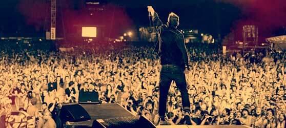 cantante de espaldas y público en un concierto