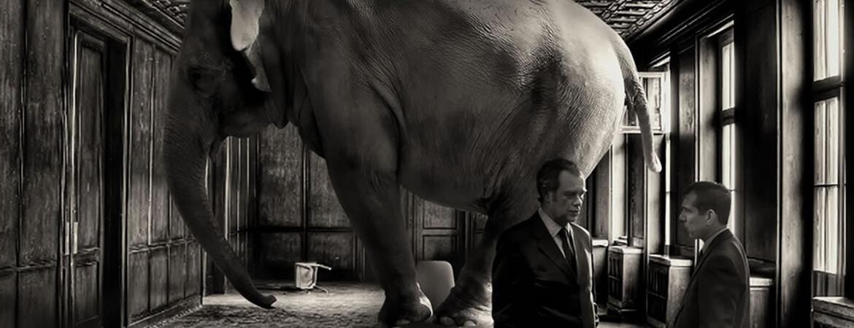 Saca al elefante de la habitación