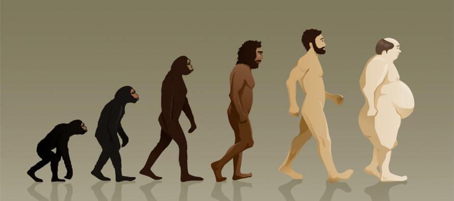 Evolucion indeseable del ser humano hacia un ser gordo y enfermo